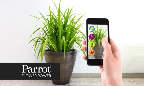 Integrating Parrot Flower Power API with C2M