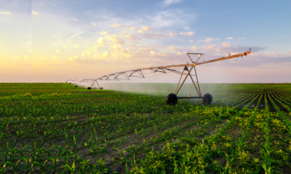 Benefits of a Smart Agriculture Solution